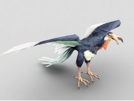 Condor Bird 3d preview