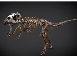 Tyrannosaurus-rex Skeleton 3d preview