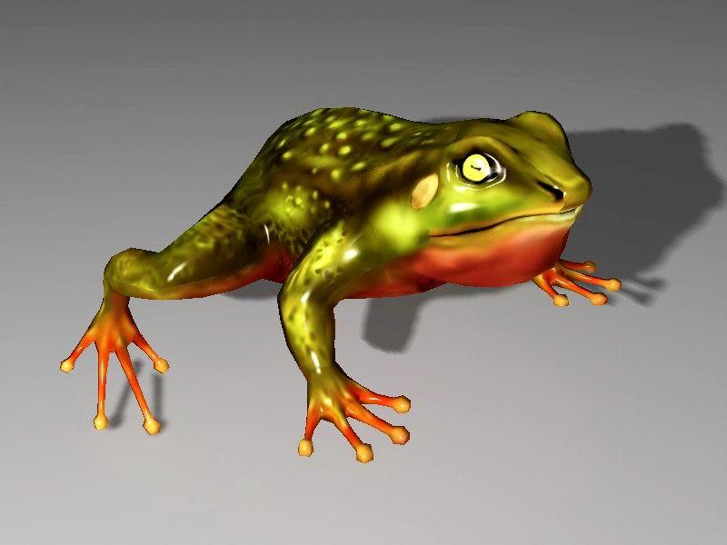 Pond Frog 3d rendering