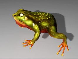 Pond Frog 3d preview