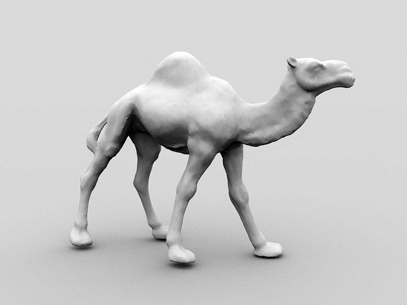 Desert Camel 3d rendering