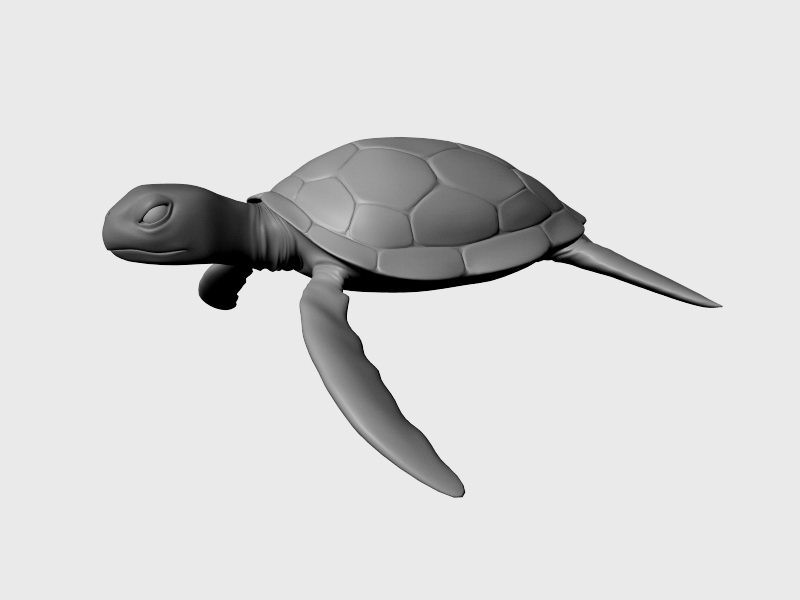 Giant Sea Turtle 3d rendering