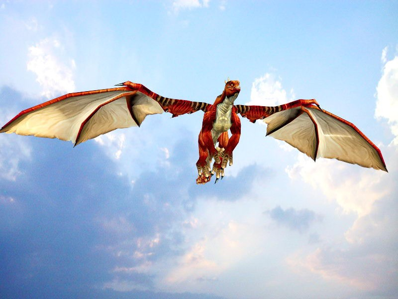 Animated Red Dragon 3d rendering