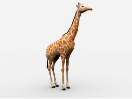Beautiful Giraffe 3d preview