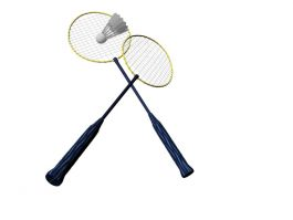 Badminton Racket and Shuttlecock 3d preview