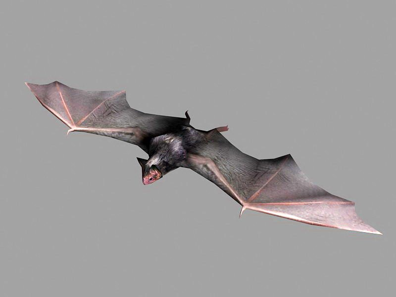 Brown Bat 3d rendering