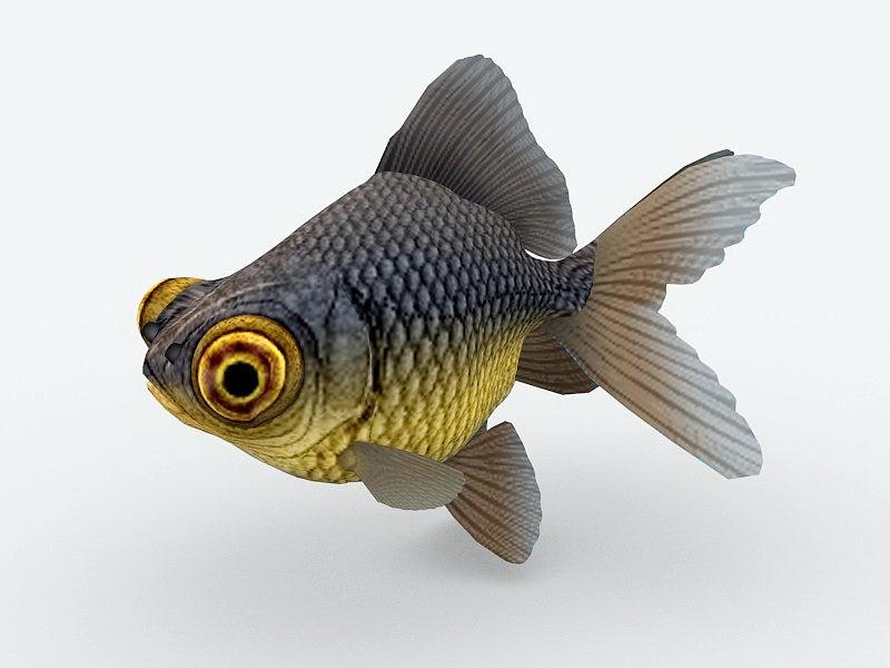 Telescope Eye Goldfish 3d rendering