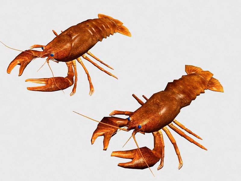 Red Crayfish 3d rendering