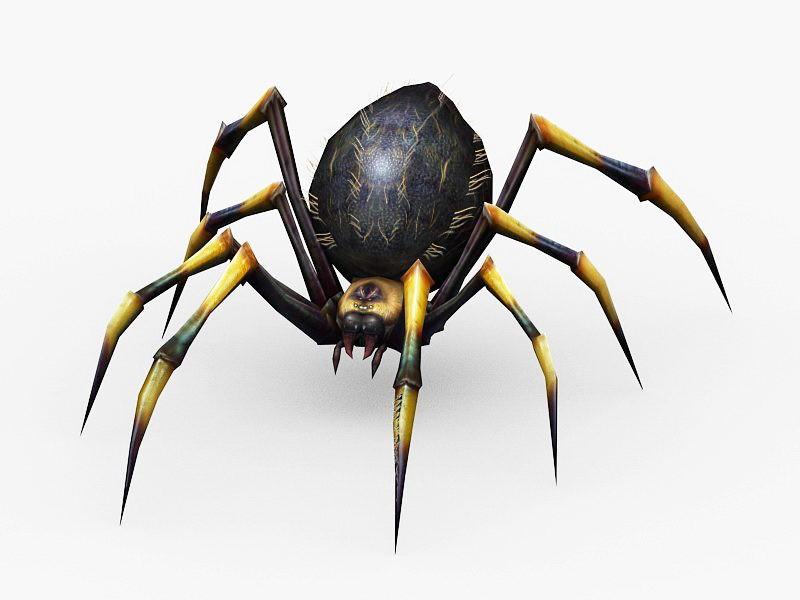 Poisonous Spider 3d rendering