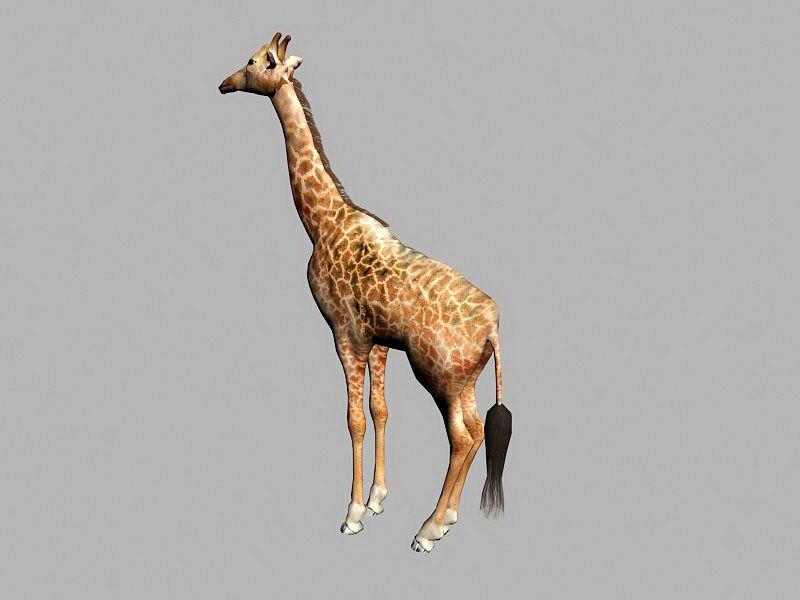Wild Giraffe 3d rendering