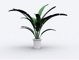 Large Indoor Potted Plant 3d preview