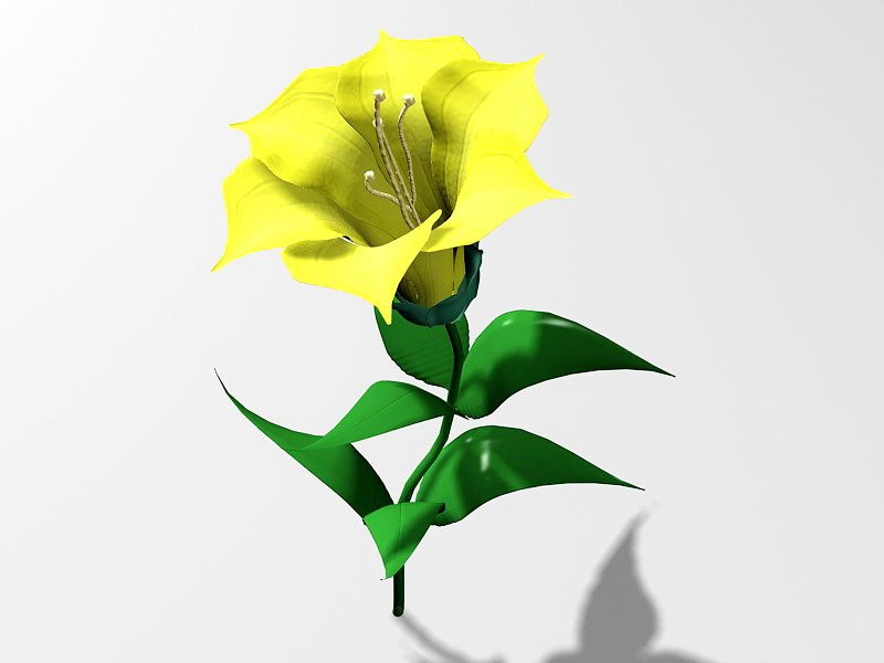 Beautiful Yellow Flower 3d rendering