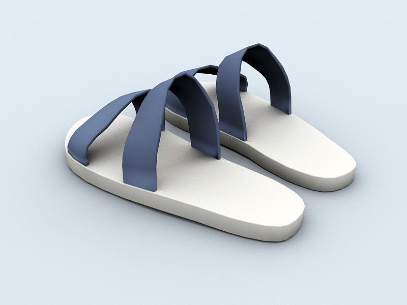 Beach Slippers 3d rendering