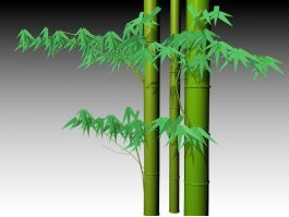 Growing Bamboo 3d preview