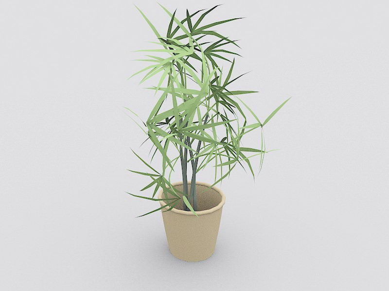 Potted Tree Plant 3d rendering