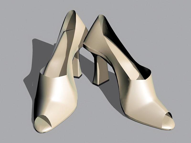 Lady High Heel Shoes 3d rendering