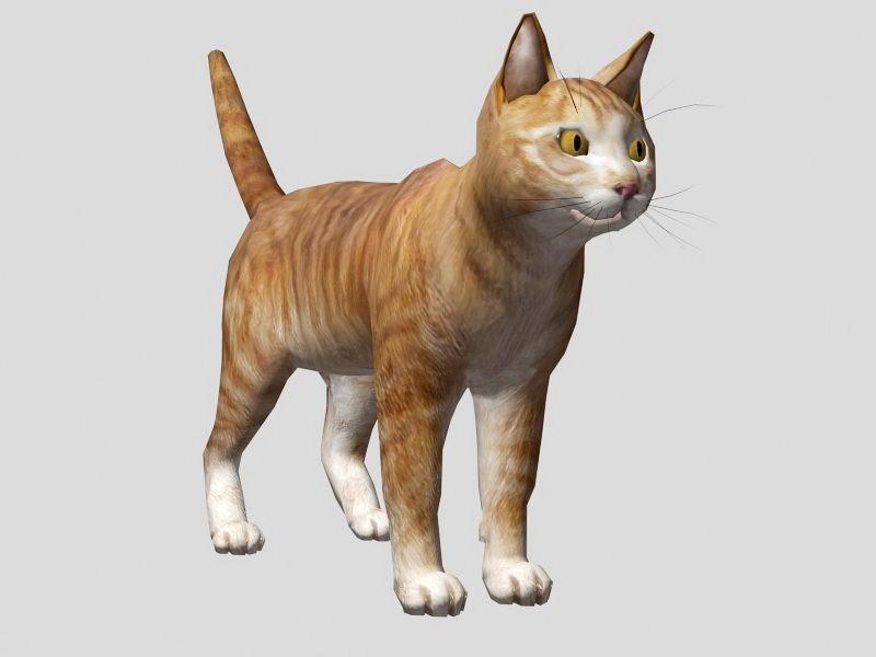 Cute Orange Cat 3d rendering