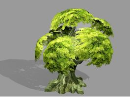 Anime Old Tree 3d preview