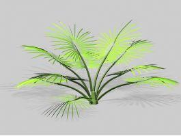 Palm Shrub 3d preview