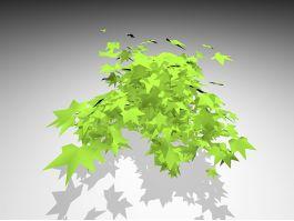 Ivy Bush plant 3d preview