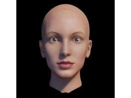 Bald Head Female 3d preview