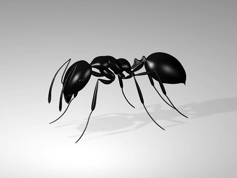 Giant Black Ant 3d rendering