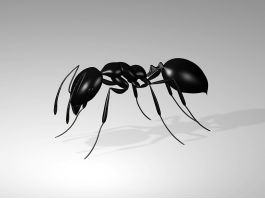 Giant Black Ant 3d preview