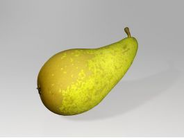 Concorde Pear 3d preview