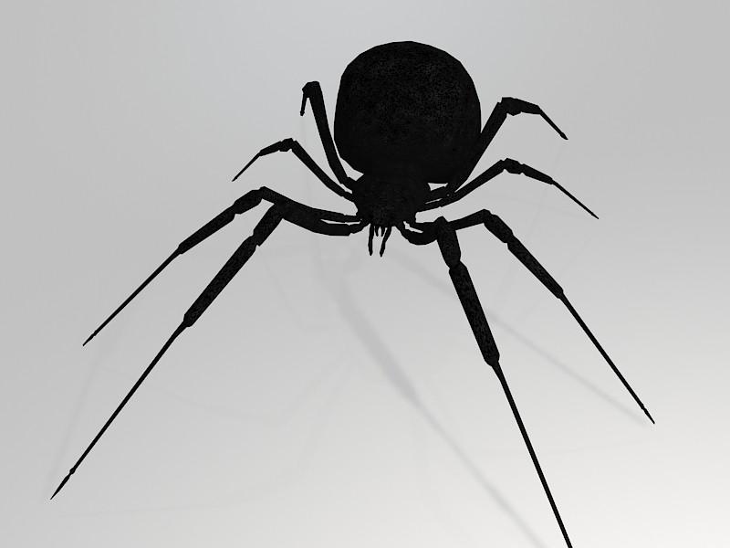 Black Widow Spider 3d rendering