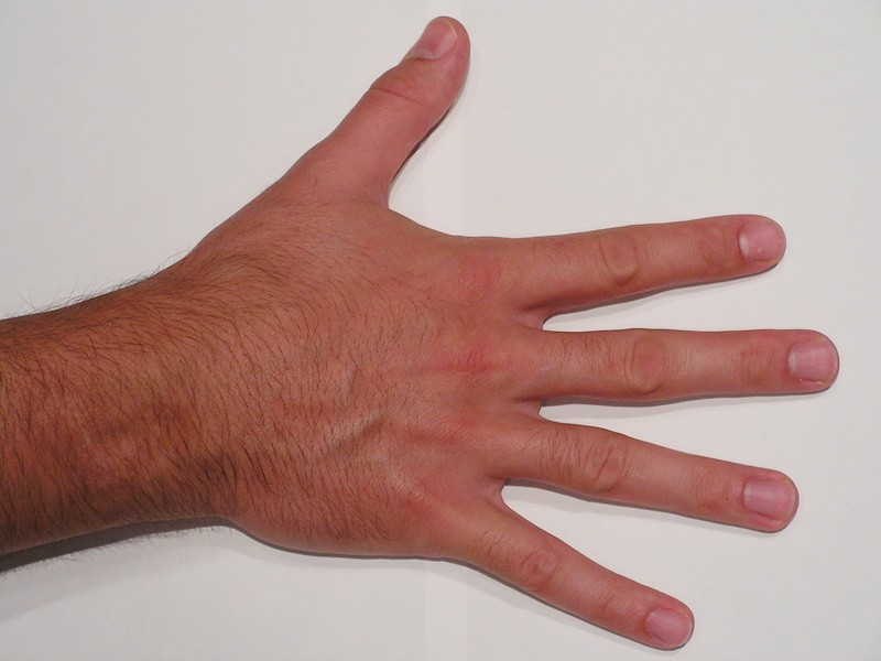 Male Right Hand 3d rendering