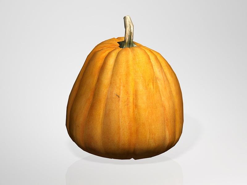 Sugar Pumpkin 3d rendering