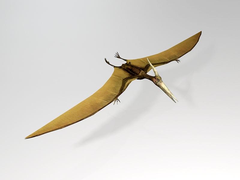 Pterosaur Flying Dinosaur 3d rendering