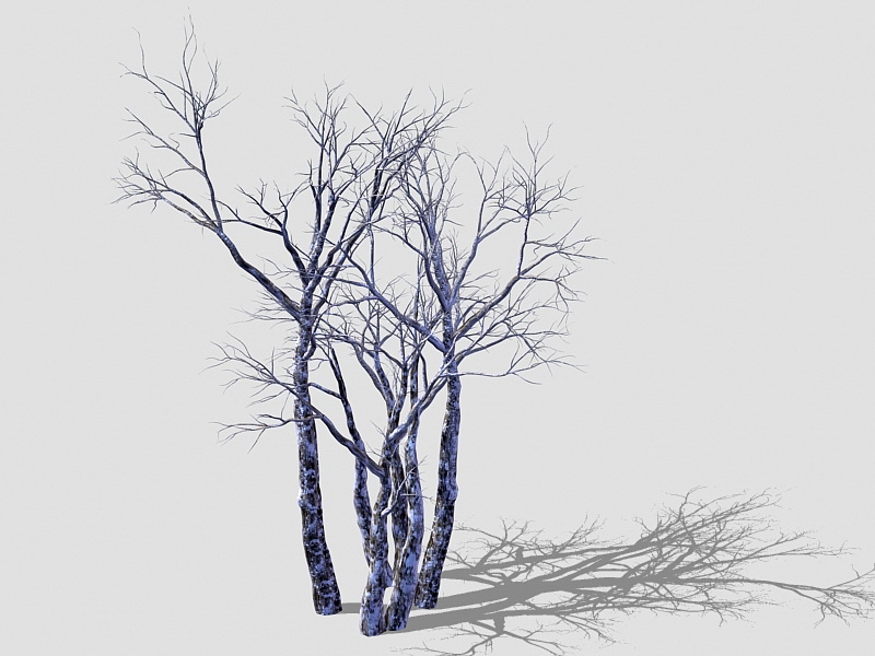 Winter Withered Trees 3d rendering
