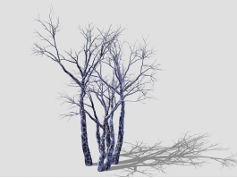 Winter Withered Trees 3d preview