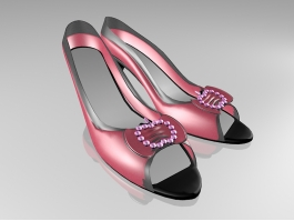 Open Toe High Heel Shoes 3d preview