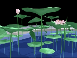 Small Lotus Pond 3d preview