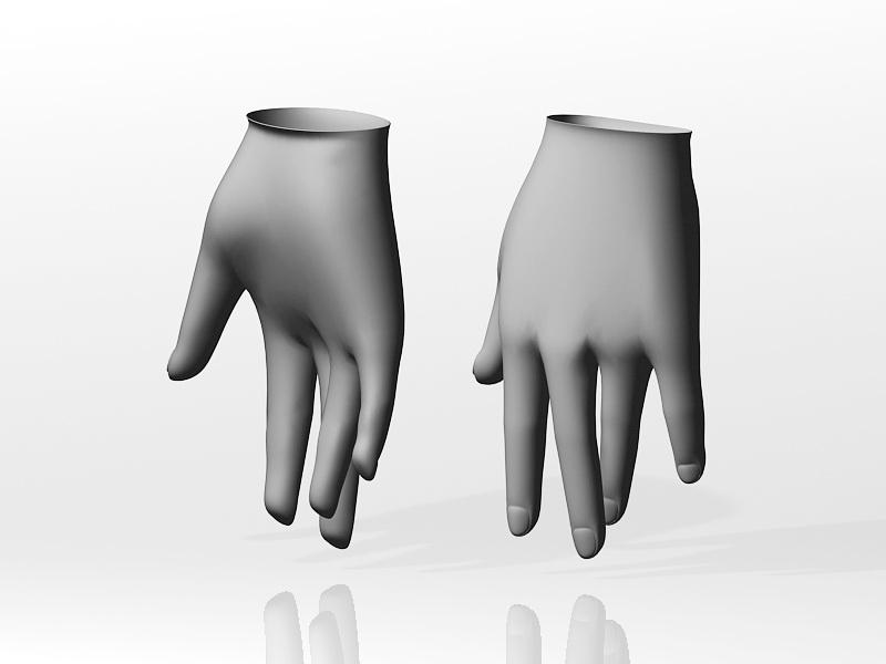 Female Hand 3d rendering
