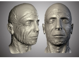 Old Man Head 3d model preview